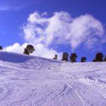 [en]: skiers
